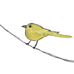 That Yellow Bird